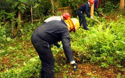 Curso para rescate forestal